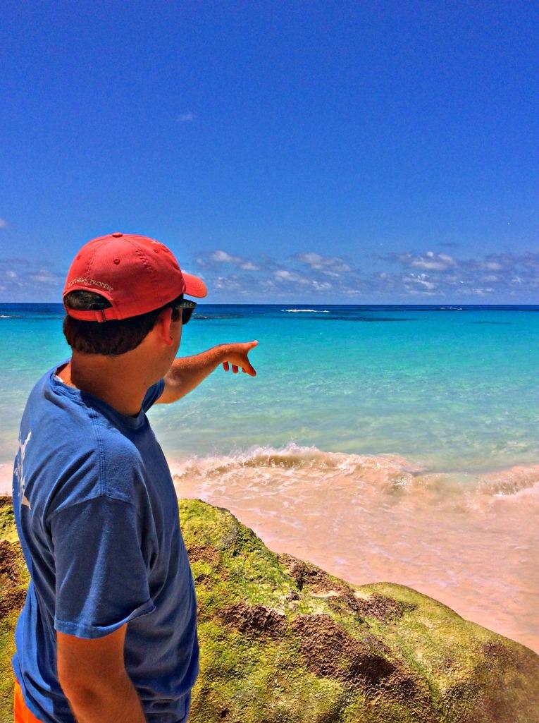 Bermuda Barrett Pointing