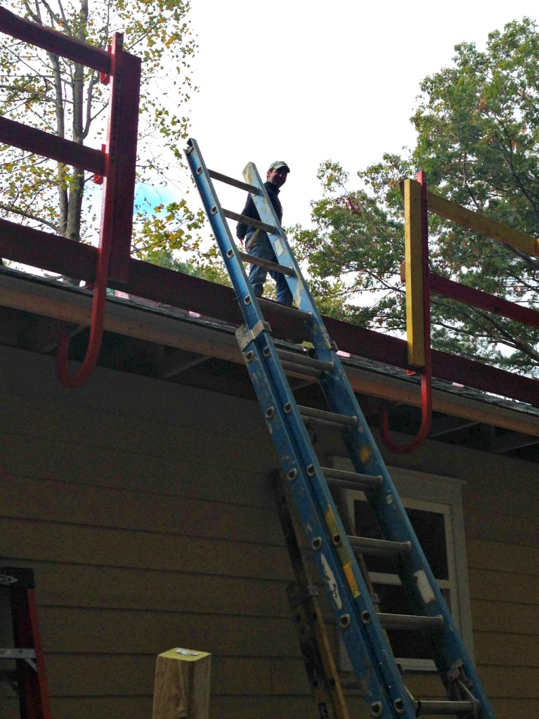 brian roof habitat